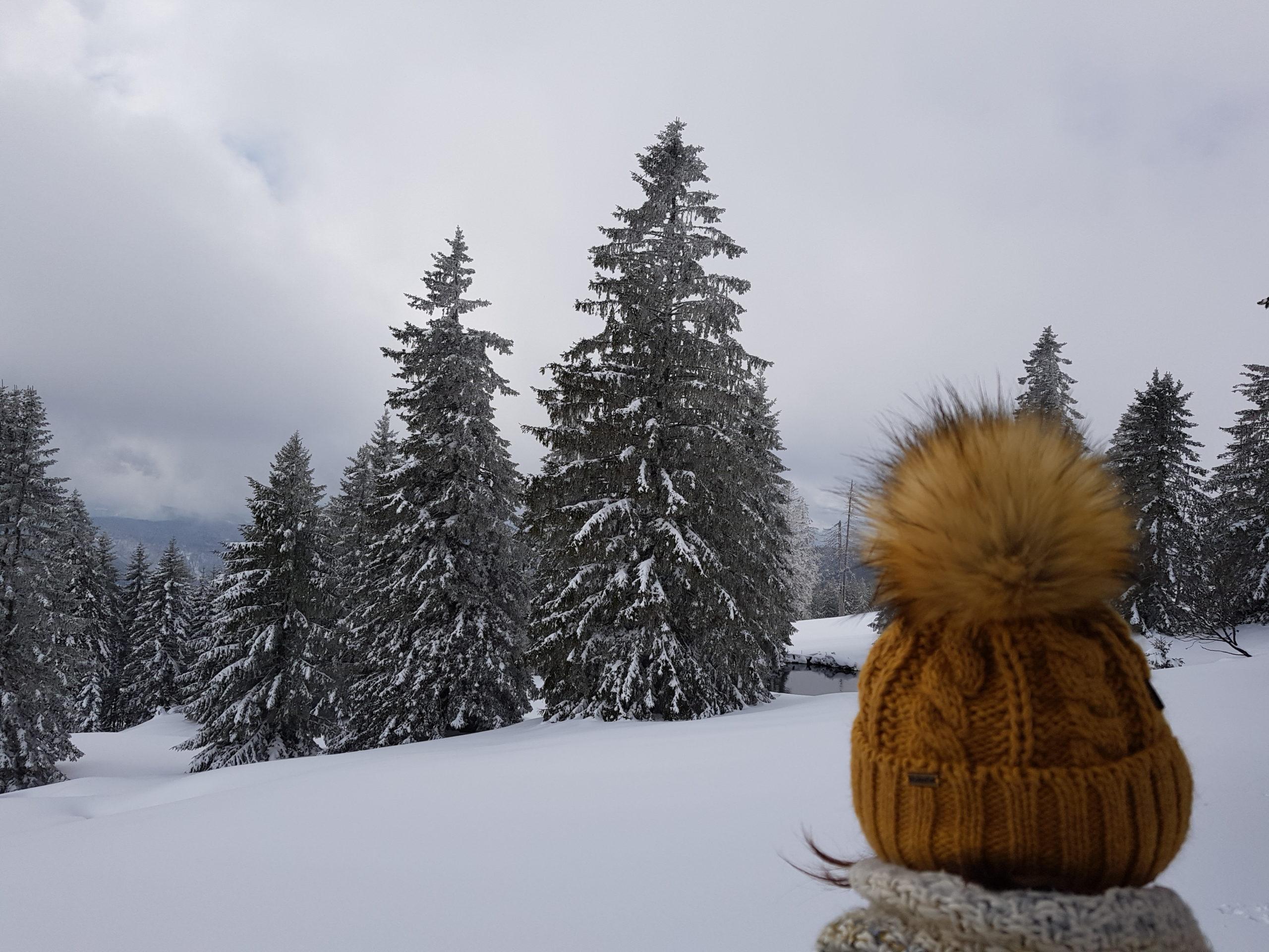 Ausblick auf die Winterlandschaft